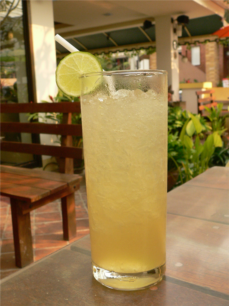 Typical Highball or Tall Glass